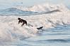 100906-Surfing-122