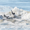 Surfing Lido 4-25-20-020