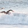 101002-Surfing-010