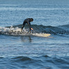 Surfing Long Beach 6-1-14-030