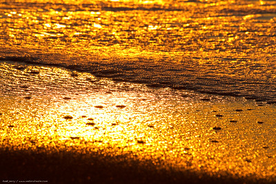 a closeup of the sand as water drains out with the wave reveals tiny prisms of the golden light of sunset.