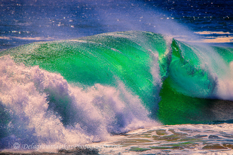 20110902_The Wedge_1893