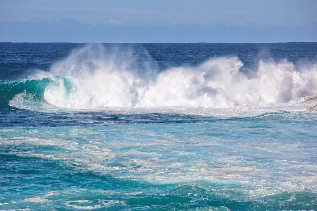Bondi Swells - 0049