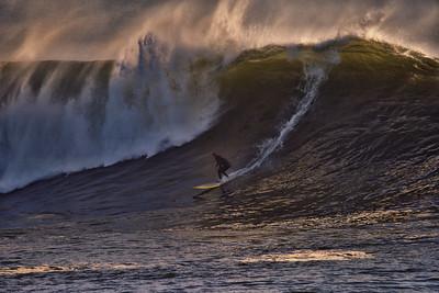 Surfer22