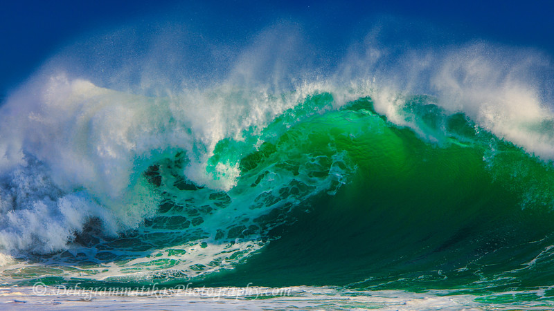 20110902_The Wedge_2069