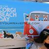 2015-04-11_Corgi Beach Day_15.JPG