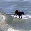 Surfin Sande_6113.JPG