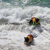 Booker D Surfdog_Onyx Shorepound_6825-6796.JPG