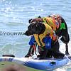 Booker D Surfdog_Onyx Shorepound_6867.JPG
