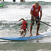 Chris_deAboitiz_Rama_2016-03-06_Noosa_Surfing Dog Spectacular_33.JPG