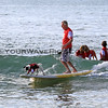 Patches_2016-03-06_Noosa_Surfing Dog Spectacular_81.JPG