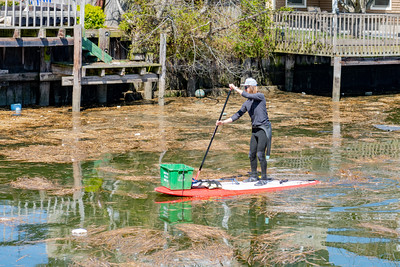 Surfrider Foundation Canal Cleanup 2018-030