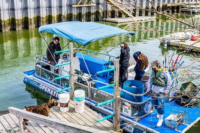 20210424-Surfrider Canal Cleanup 4-24-21_Z622788