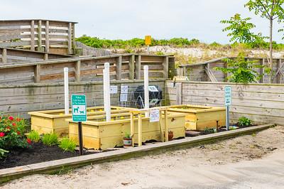 20210601-Surfrider Foundation Ocean Friendly Garden _Z623971