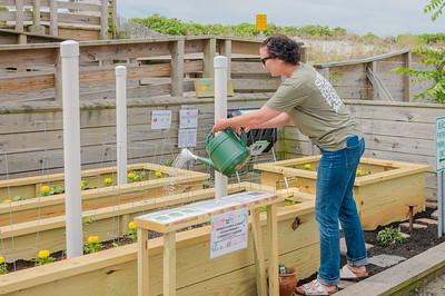 20210601-Surfrider Foundation Ocean Friendly Garden _Z624002