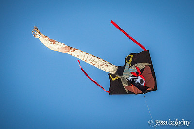 Kites916