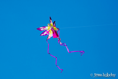 Kites909