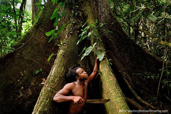 SURINAME. Excursion en forêt avec un guide Saramaca à partir du Awarradam jungle lodge L'Awarradam.  Jungle Lodge a été construit sur une ile, avec vue sur les sauts de la rivière Gran Rio, par la communauté noir-marron Saramaca.