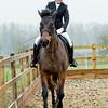 Rider 6-9968