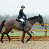 Rider 6-9955