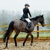 Rider 5-9951