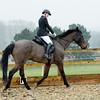 Rider 6-9954