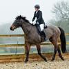 Rider 6-9962