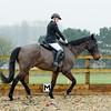 Rider 6-9953