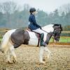 Rider 5-0184