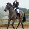 Rider 5-9966