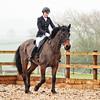 Rider 4M-1181