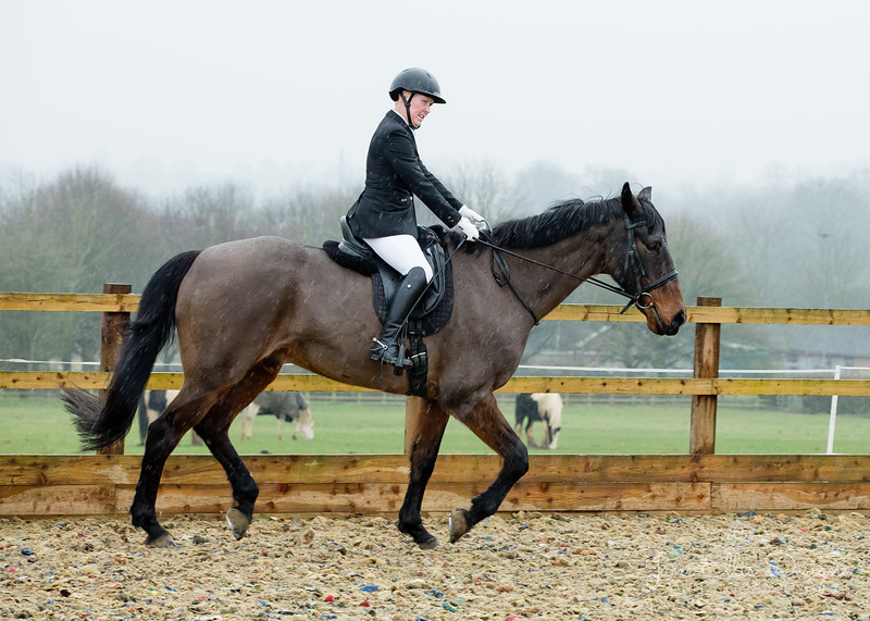 Rider 5-9955