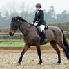 Rider 5-9983