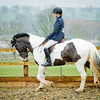 Rider 5-0154