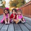 DSC04416 David Scarola Photography