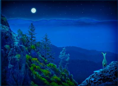 Moon Over Calistoga
