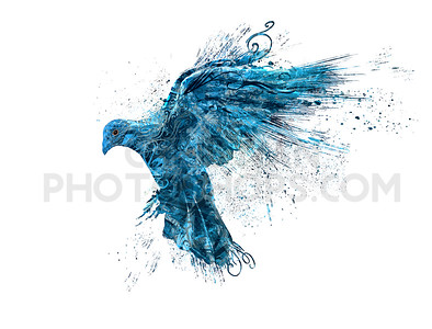 Abstract blue dove