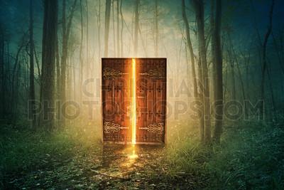 Glowing door in forest