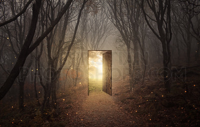 Door in the forest