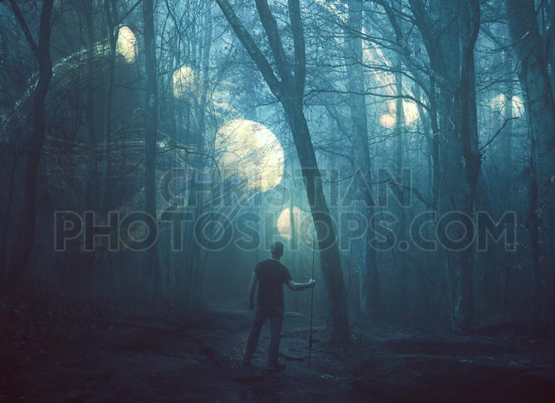 Jellyfish in a dark forest