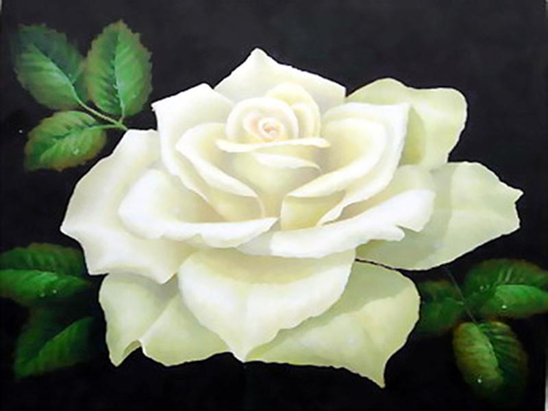 print-white_rose-4