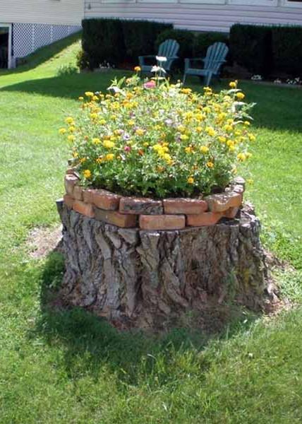 print-Old-Tree-Stump-Ideas-1