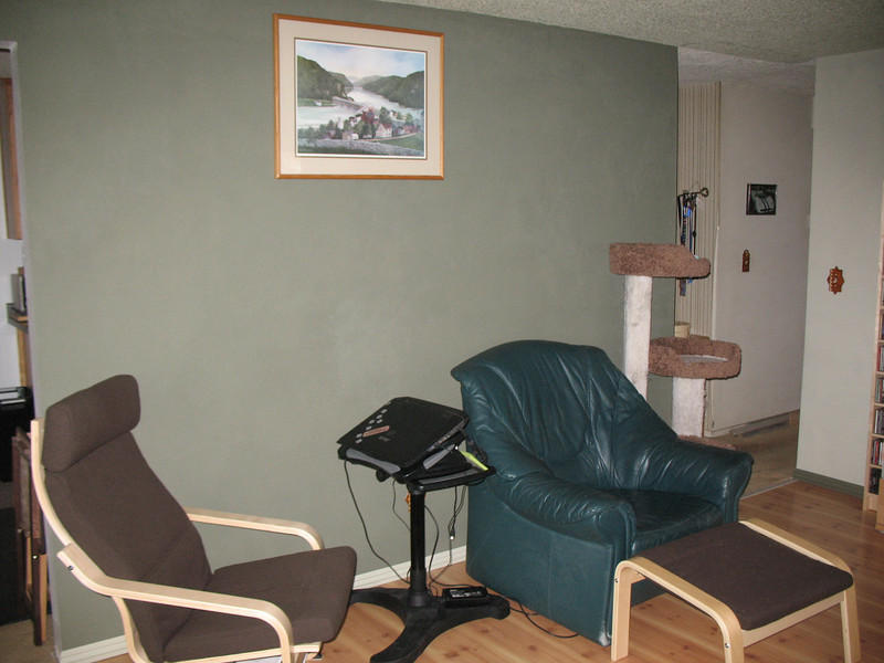 Looking east. (Once the green chair is gone we may move the other new chair to this spot.)