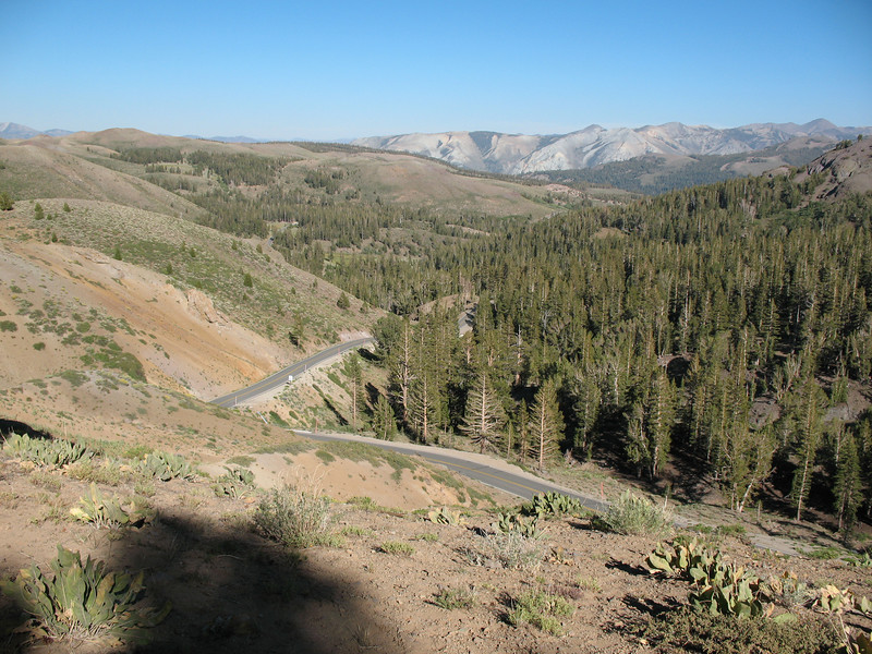 Looking east from the top of Sonora Pass.