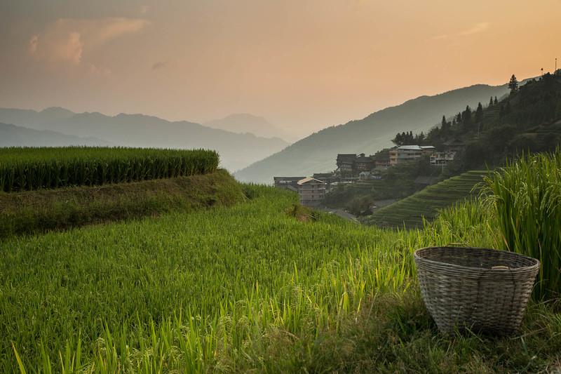 Rice Terraces and Village of P'ingan