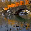 Gapstow Bridge with Ducks