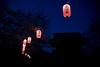 Lanterns and Sakura - Kanazawa Bunko