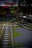 Autumn path - Kyoto