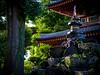 Quiet Temple in Nakano