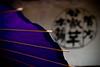 Purple Umbrella - Kyoto